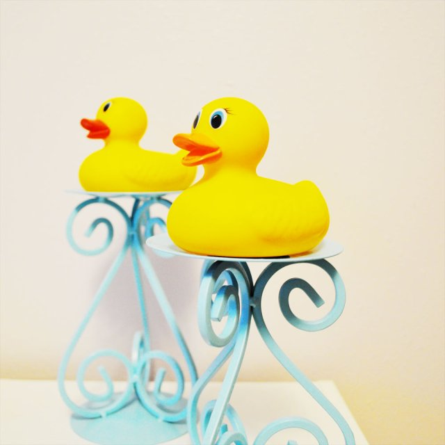 Rubber Duckie Holders